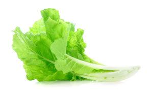 phatt-diet-lettuce